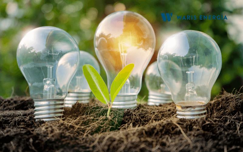 Energia renovable o energia limpia